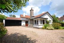 Station Road Bungalow for sale