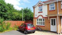 Semi-Detached Bungalow to rent in Celandine Drive...