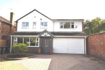 Ashby Road Detached property to rent