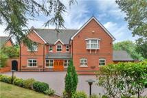 4 bed Detached house for sale in Hastings Road...