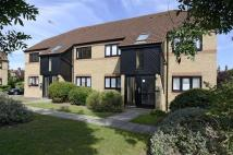 Flat to rent in Mulberry Close, Luton...