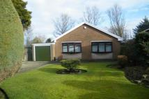 Detached Bungalow to rent in Armadale Road, Ladybridge