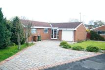 3 bedroom Bungalow in Brancepeth Road, Oxclose