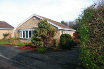 3 bed Bungalow in Glenholme Close...
