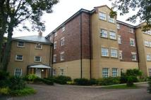 2 bed Apartment to rent in Shotley Grove...