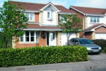 4 bedroom Detached home to rent in Bradwell Way...