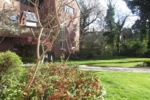 Apartment to rent in Darlington - Squires...