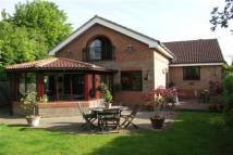 4 bed Bungalow to rent in Aycliffe Village -...