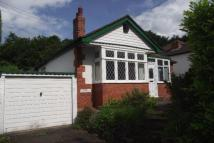 Detached Bungalow to rent in Carmel Hill, Carmel