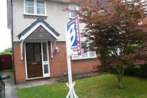 Hoole semi detached house to rent