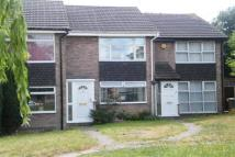 Terraced home to rent in Elton ** March madness...