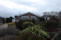 3 bedroom Detached Bungalow to rent in Higher Kinnerton **...