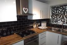 semi detached property to rent in Park Lane, Pinxton