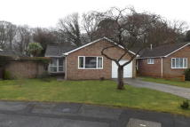2 Bungalow to rent