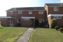 3 bedroom house in 3 BED HOUSE - WALKFORD...