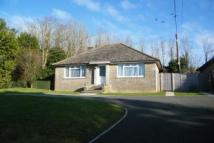 Bungalow to rent in Upper Lane, Brighstone