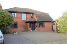 4 bedroom home in HUTTON POPLARS, BRENTWOOD