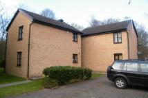 Studio flat to rent in Thriftwood, Hutton