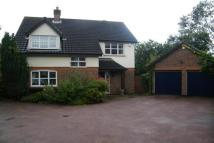 4 bed property in STEEPLE VIEW