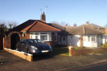 2 bed Bungalow in Allington Road...