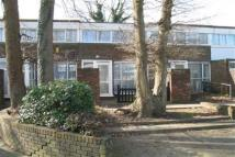 Broadfield Terraced property to rent