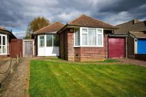2 bedroom Detached Bungalow in Tandridge Gardens...