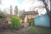 3 bedroom Cottage in Eastbourne Road...