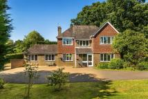 Detached house for sale in Outwood, Surrey