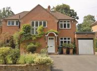 4 bed Detached house to rent in Cockshot Hill, Reigate