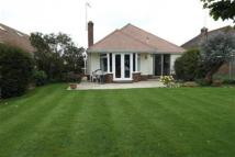 Detached Bungalow to rent in Goring-By-Sea