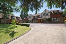 6 bedroom Detached property to rent in Camp Road...