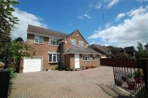 4 bedroom Detached home to rent in High Beeches...