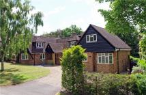 6 bed Detached home to rent in Chiltern Hill...