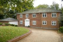 Detached property to rent in Ruxley Ridge, Claygate