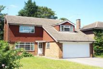 4 bed house in Esher