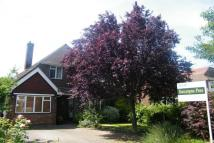 property in Harefield, Esher