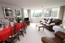 3 bedroom Flat to rent in THE AVENUE  SNEYD PARK