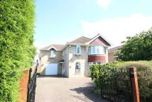 5 bedroom Detached home in Appleby Glade           ...