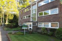 Apartment in Oakwood Court -...