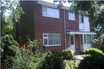 7 bed home to rent in Oakwood Drive - Lordswood