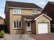 3 bed Detached house in 53  Mary Fisher Crescent...