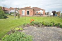 Detached Bungalow for sale in Charleswold Court...