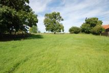 Manor House Farm Land