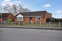 Detached Bungalow for sale in Rowan Way, New Balderton...