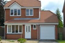 3 bed Detached house to rent in Rowan Way, Balderton...