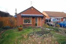 Molyneux Drive Detached Bungalow for sale
