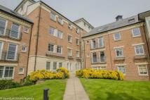 Flat to rent in Heslington House