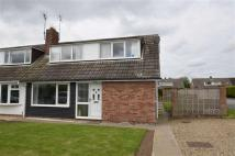 3 bed Semi-Detached Bungalow in Bishopthorpe