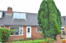 3 bed semi detached property to rent in Ashley Park Road