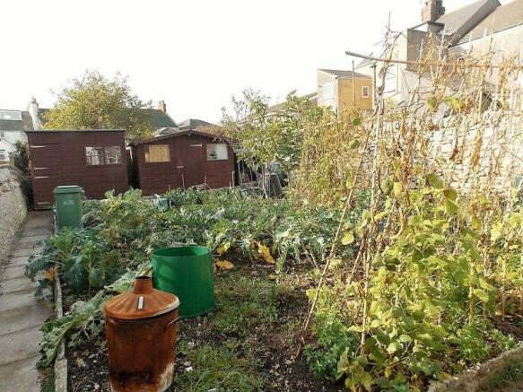 Vegetable Plot...